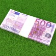 Euros in the grass — Stock Photo