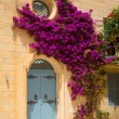 Historic Architecture in Mdina — Stock Photo #27677479