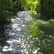 Stock Video: River in English garden
