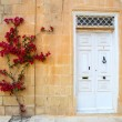 Facade in Mdina — Stock Photo #28420617