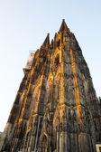 Kathedraal van keulen — Stockfoto
