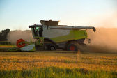La cosecha en la puesta del sol — Foto de Stock