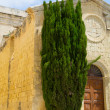 Historic Architecture in Mdina — Stock Photo #40466227