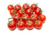 Fresh Tomatoes on the stalk — Stock Photo