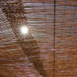 Sunshine shining through a thatched roof — Stock Photo #46761501