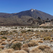 Panoramic image of Mount Teide — Stock Photo