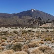 Panoramic image of Mount Teide - Stock Photo