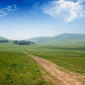 Road and grassland — Stock Photo
