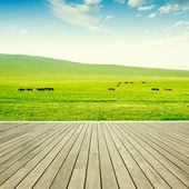 Wood flooring and grassland — Stock Photo
