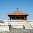 The Forbidden City — Stock Photo #17122775