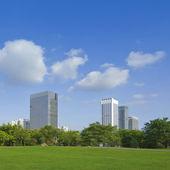 Городской парк — Стоковое фото