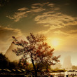 Sunset landscpae of yangshuo — Stock Photo
