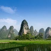 Pastoral scenery in Guilin — Stock Photo