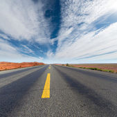 Road in the wild — Stock Photo