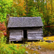 Stock Photo: Log Cabin in Fall