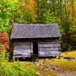 Log Cabin in Fall — Stock Photo