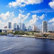 Stock Photo: Tampa Florida