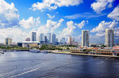Tampa Florida — Stock Photo