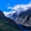 Franz Josef Glacier — Stock Photo #19709899
