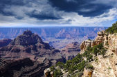 Nationaalpark grand canyon — Stockfoto