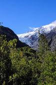 Franz josef glacier — Stockfoto