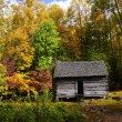 Log Cabin in the Fall — Stock Photo