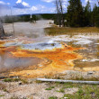 Stock Photo: Minute Geyser