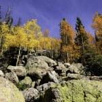 Fall in Colorado — Stock Photo #35068515