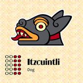 Aztec symbol Itzcuintli — Stock Vector