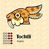 Aztec symbol Tochtli — Stock Vector