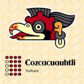 Aztec symbol Cozcacuauhtli — Stock Vector