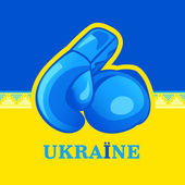 Ukraine fight — Stock Vector