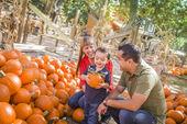 Glücklich gemischte abstammung-familie auf den kürbis patch — Stockfoto