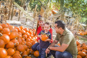 Happy Mixed Race Family at the Pumpkin Patch — 图库照片