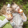 Adorable Brother and Sister Children Eating Apples Outside - Stock Photo
