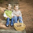 Two Children on Wood Steps with Basket of Pine Cones — Stock Photo