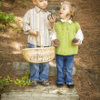 Stock Photo: Two Children with Basket Collecting Pine Cones Outside