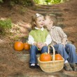 Brother and Sister Children on Wood Steps with Pumpkins Whisperi - Стоковая фотография