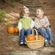 Brother and Sister Children Sitting on Wood Steps with Pumpkins — Stock Photo #13704209