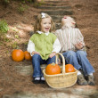 Brother and Sister Children Sitting on Wood Steps with Pumpkins — Stock Photo #13704223