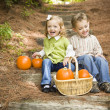 Brother and Sister Children Sitting on Wood Steps with Pumpkins - Stock Photo