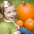 Cute Young Child Girl Enjoying the Pumpkin Patch. - Stock Photo