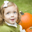 Royalty-Free Stock Photo: Cute Young Child Girl Enjoying the Pumpkin Patch.