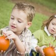 Royalty-Free Stock Photo: Cute Young Brother and Sister At the Pumpkin Patch