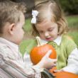 Cute Young Brother and Sister At the Pumpkin Patch — Stock Photo #13704294