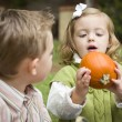 Cute Young Brother and Sister At the Pumpkin Patch — Stock Photo #13704303
