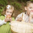Adorable Children Eating Red Apples Outside — Stock Photo #14557725