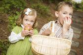 Adorables enfants mangeant des pommes rouges à l'extérieur — Photo