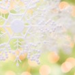 Snowflake Over an Abstract Green and Gold Background — Stock Photo