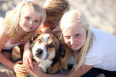 Cute Sisters and Brother Playing with Dog — Stock Photo